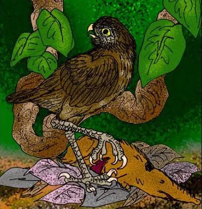 Гигантская кубинская сова